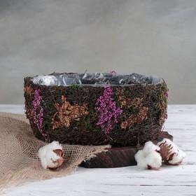 Кашпо плетёное овальное «Пробуждение», 26×18×10 см Ош