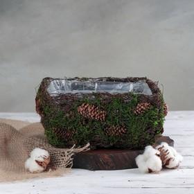Кашпо плетёное квадратное «Лесная сказка», 20×20×10 см Ош