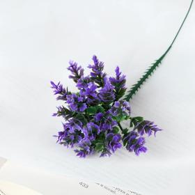 Букет 'Волнистые листочки' 17 см, микс Ош