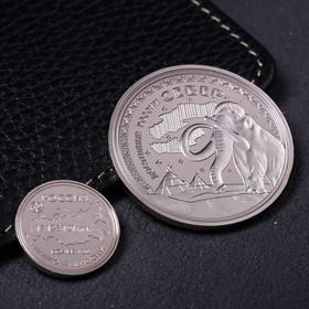 Набор монет подарочный «Север», 9 х 7 см Ош