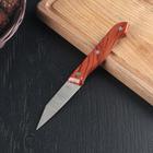 Нож «Универсал», лезвие 8 см, цвет коричневый