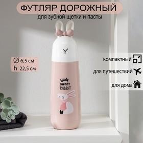 Футляр для зубной щётки и пасты «Кролик», 22,5 см, цвет МИКС Ош