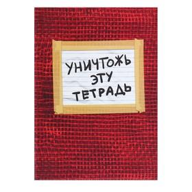 Тетрадь А5, 48 листов клетка «Уничтожь эту тетрадь», УФ-лак, с заданиями, красная