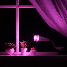 Светильник для растений 12 Вт, 9 мкмоль/с, гибкая ножка 15 см, выкл на корпусе Ош