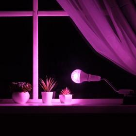 Светильник для растений 15 Вт, 12 мкмоль/с, гибкая ножка 15 см, выкл на корпусе Ош