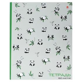 Тетрадь на кольцах, 160 листов в клетку «Панды», твёрдая обложка, глянцевая ламинация, со сменным блоком Ош