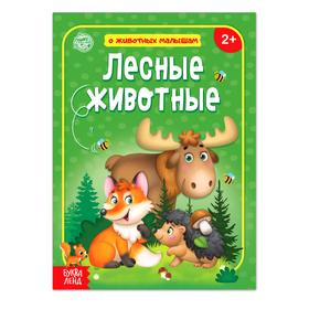 Книга «Лесные животные» 12 стр.