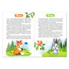 Книга «Лесные животные» 12 стр. - Фото 3