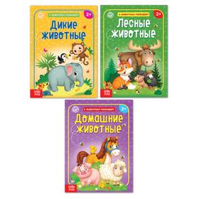 Набор книг обучающий про животных, 3 шт. по 12 стр.