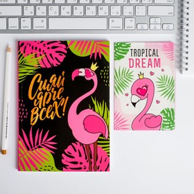Набор обложка для паспорта и ежедневник 'Сияй ярче всех Фламинго' Ош