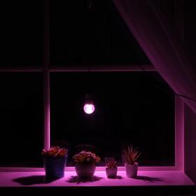 Светильник для растений 7 Вт, 5 мкмоль/с, провод 1,7 метра с выключателем, липучка на окно Ош
