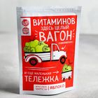 Фруктовые чипсы «Витаминов здесь целый вагон»: яблоко, 25 г