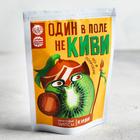 Фруктовые чипсы «Один в поле не киви»: киви, 25 г