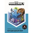 Руководство по Minecraft. Первое знакомство. Подводный мир Minecraft
