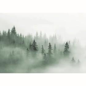 Фотообои 'Туманный лес', 200х140 см Ош