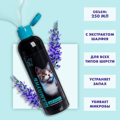 Шампунь гипоаллергенный для кошек - Фото 1