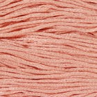 Нитки мулине, 8 ± 1 м, цвет телесный №754