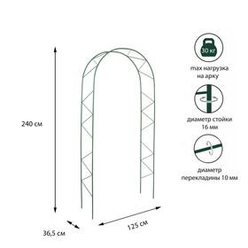 Арка садовая, разборная, 240 × 125 × 36.5 см, металл, зелёная, «Ёлочка», Greengo Ош