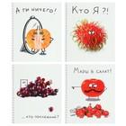 Тетрадь 48 листов в клетку, на гребне Crazy Fruits, мелованный картон, ВД-лак, МИКС - Фото 1