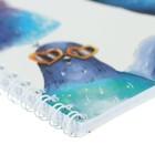 Тетрадь 48 листов в клетку, на гребне «Глупые Птицы» мелованный картон, ВД-лак, микс - Фото 2