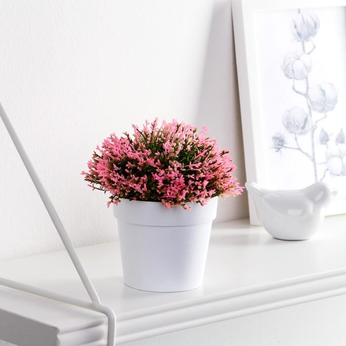 """Бонсай """"Мелкие цветочки"""" 8х12 см микс"""
