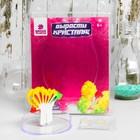 Набор для выращивания кристалла «Бабочка», в пакете