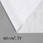 Материал укрывной, 2,1 × 10 м, плотность 60, с УФ-стабилизатором, белый, Greeng, Эконом 20% - Фото 1