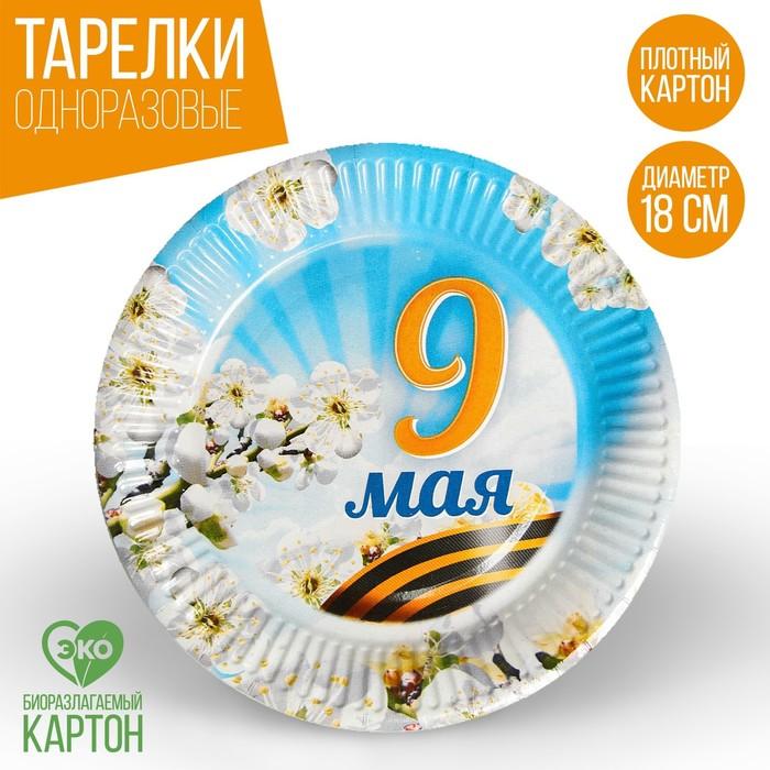Тарелка бумажная 9 Мая, весна
