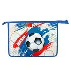 Папка для тетрадей А4, молния сверху, ламинированный картон, объёмная, для мальчика «Футбольные мячи»