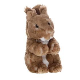 Мягкая игрушка «Белка», 20 см