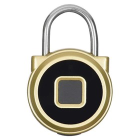 Умный замок Digma SmartLock R1, навесной, разбл.отпеч.пальца, 100мАч, золотистый (SLR1)