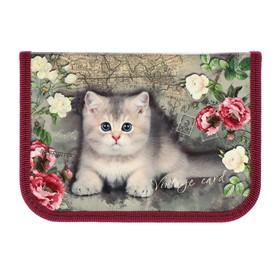 Пенал 1 секция, 130 х 190 мм, ламинированный картон, «Оникс», ПКК 04- 5, «Котёнок винтаж»