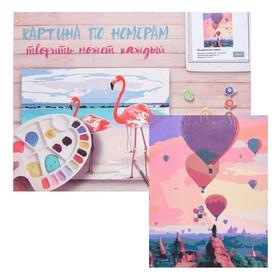 Картина по номерам «Воздушные шары» 40×50 см