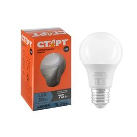 """Лампа светодиодная """"Старт"""" Эко, E27, 10 Вт, 6500 K, 230 В, холодный белый"""