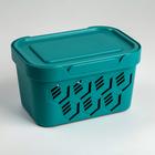 Ящик для хранения с крышкой Deluxe, 1,9 л, 18,9×13,2×11 см, цвет бирюзовый