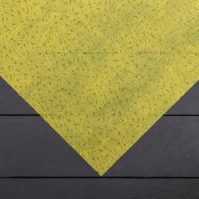 Материал укрывной, 1,6 × 6 м, плотность 60, с УФ-стабилизатором, песочный, «Спанграм» Ош