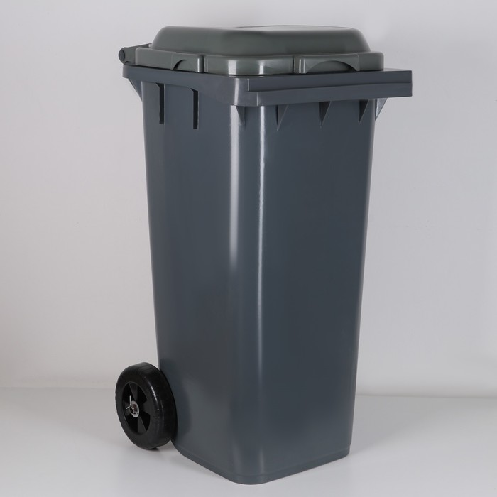 Бак для мусора «Эконом», 120 л, на колёсах