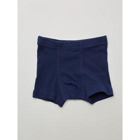 Трусы-боксеры для мальчика, рост 110-116 см, цвет тёмно-синий, голубой, 2 шт.