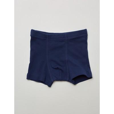 Трусы-боксеры для мальчика, рост 110-116 см, цвет тёмно-синий, голубой, 2 шт. - Фото 1
