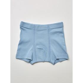 Трусы-боксеры для мальчика, рост 110-116 см, цвет серый, голубой, 2 шт.