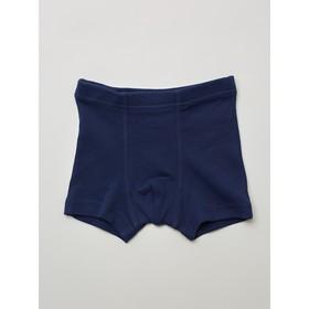 Трусы-боксеры для мальчика, рост 110-116 см, цвет тёмно-синий, зелёный, 2 шт.