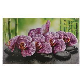 Кухонный фартук 'Орхидея ванда', 1000x600x0,5 Ош