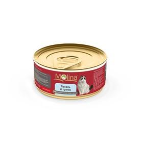 Влажный корм Molina для кошек, лосось с тунцом в желе, 80 г