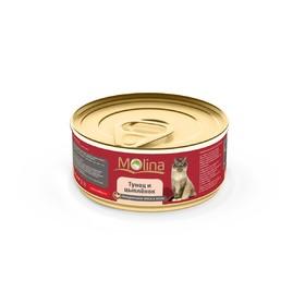Влажный корм Molina для кошек, тунец с цыпленком в желе, 80 г