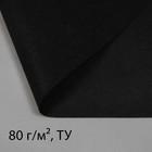 Полоса защитная для междурядий, плотность 80, УФ, 0,3 ? 5 м, чёрный, Greengo, Эконом