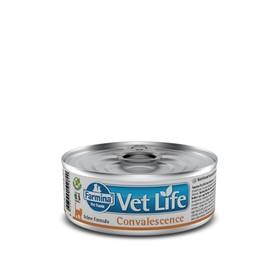 Влажный корм Farmina Vet Life Cat Convalescence для кошек в период выздоровления, 85 г