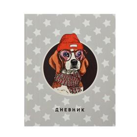 Дневник школьный, 5-11 класс «Оранжевый пёс», твёрдая обложка, глянцевая ламинация, 48 листов Ош