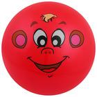 Мяч детский «Животные 2», с наклейкой, d=22 см, цвета МИКС - Фото 1