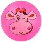 Мяч детский «Животные 2», с наклейкой, d=22 см, цвета МИКС - Фото 5