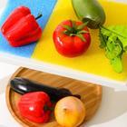 Набор ковриков для холодильника, 4 шт: 20×10 см - 2 шт, 20×20 см - 2 шт, цвет МИКС